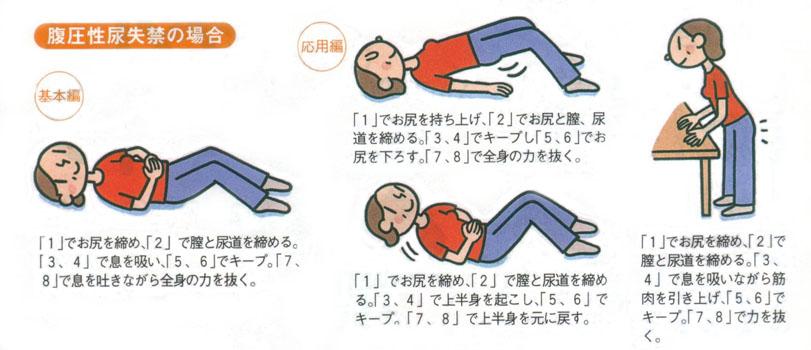 尿漏れに骨盤底筋体操