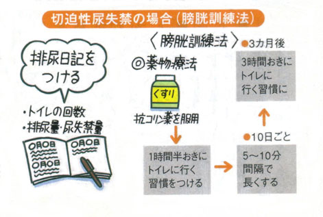 尿漏れに膀胱訓練法